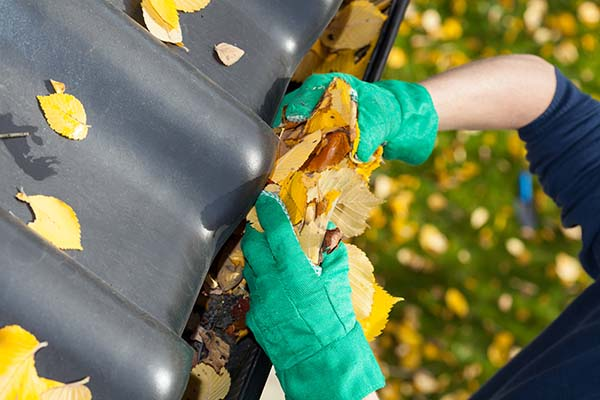 Gutter Cleaning CT West Hartford leaves